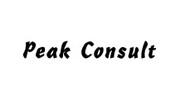 Peak Consult